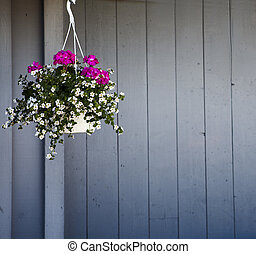 Hanging Flower Pot with fence