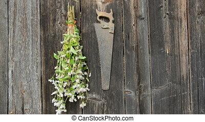 hanging garden herbs bunch on wall
