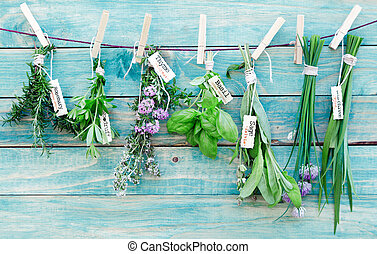 Hanging Herbs - Assorted hanging Herbs on an old and vintage...