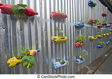 Hanging plant in recycle bottle on zinc wall.