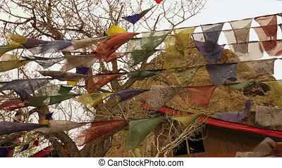 Hanging prayer flags, Mulbekh monastery, Ladakh - Low angle...