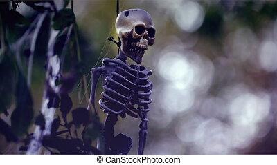 Hanging Skeleton - Halloween Skeleton Hanging on a Tree
