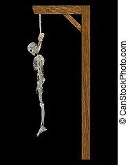 Hanging Skeleton - This image shows a hanging skeleton on a...
