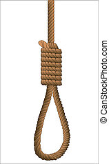 Hangman's Noose. - A typical noose knot isolated on white.