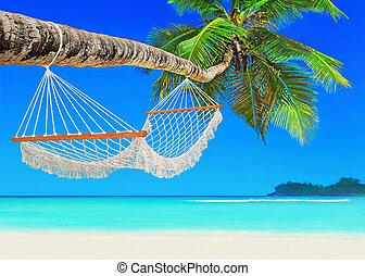 hangmat, op, kokospalm, op, tropische , zanderig, oceaan,...