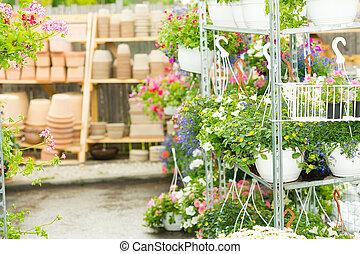 Hangup pots with flowers in garden center greenhouse plants...