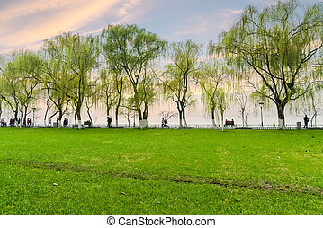 hangzhou lakeside scenery