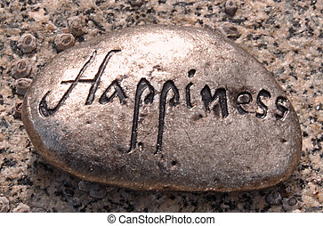 Happiness rock - a silver colored rock with the word...