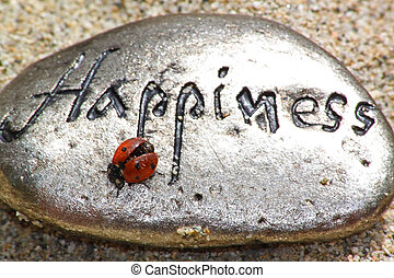 happiness rock with ladybug - a rock with the word happiness...