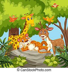 Happy animals in jungle