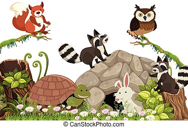 Happy Animals in the Forest
