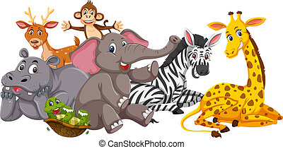 Happy animals on white background