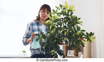 happy asian woman cleaning houseplant at home - people,...