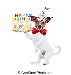 happy birthday dog - jack russell dog holding a happy...