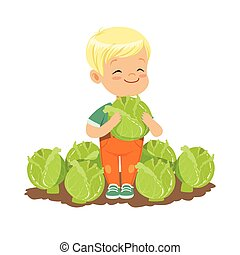 Happy blonde little boy standing with cabbage in the garden, kids healthy food concept colorful vector Illustration