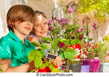 Happy boy and girl with potted strawberries plants