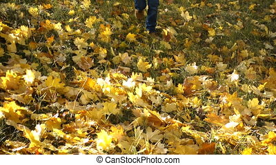 Happy boy throwing autumn leaves on sunny park