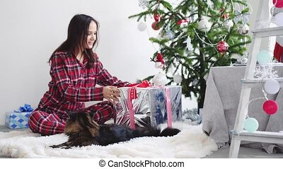 Happy brunette girl comes to christmas tree plays with maine coon cat opens gift by unleashing a festive ribbon at the New Year tree in a decorated beautiful studio. slow motion. 3840x2160