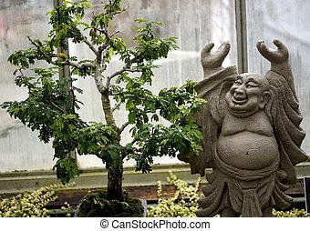 Happy Buddha bonsai Tree meditation