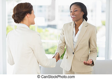Happy businesswomen meeting and shaking hands in the office