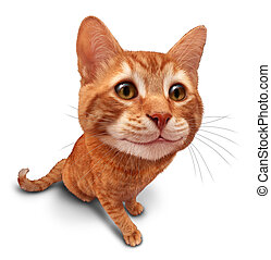 Happy Cat - Happy cat on a white background as a cute orange...