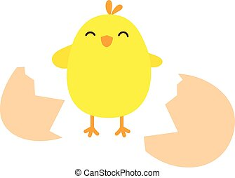 Happy chicken with the broken egg