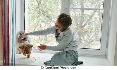 happy child girl with her dog sitting window sill at sunset....