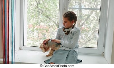 happy child girl with her dog sitting window sill at sunset. little girl is played with a pet dog yorkshire terrier. girl lifestyle and dog concept
