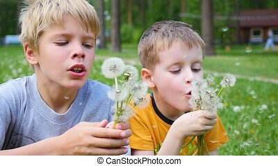 happy children blowing dandelion seeds in the Park , slow motion. Family vacation in the Park