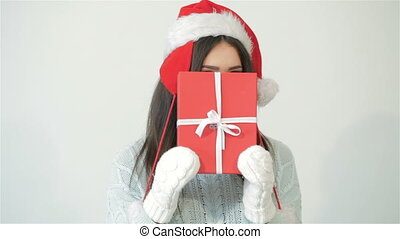 Happy christmas and new year holidays full of fun