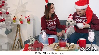 Happy couple with dog, all in Christmas clothes sitting on the sofa near Christmas tree