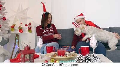 Happy couple with dog in Christmas clothes sitting on the sofa near Christmas tree