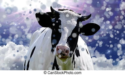 Happy Cow - Abstract animation - head bobbing cow with snow...