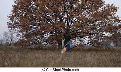 Happy cute dog running to female owner outdoors