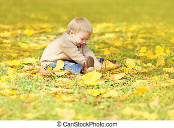 Happy cute little child sitting on grass and playing with yellow leafs in autumn park