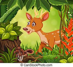 Happy dear in the jungle