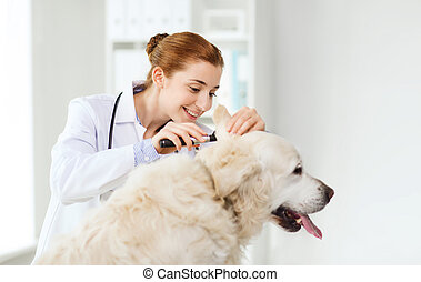 happy doctor with otoscope and dog at vet clinic - medicine,...