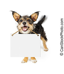 Happy Dog Carrying Blank Sign