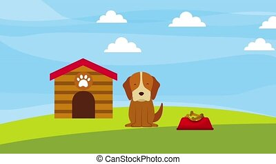 happy dog in the field wooden house and plate food animation...