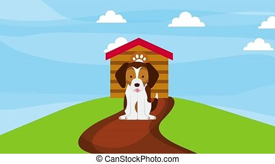 happy dog sitting road in the field wooden house animation...