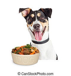 Happy smiling dog with bowl of homemade dog food including beef, carrots, potatoes and green beans