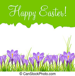 Happy Easter Card with Crocuses Vector Illustration
