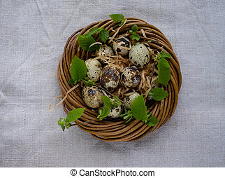 Quail eggs in the nest, selective focus