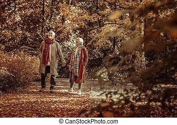 Happy elderly couple taking a stoll in a park.