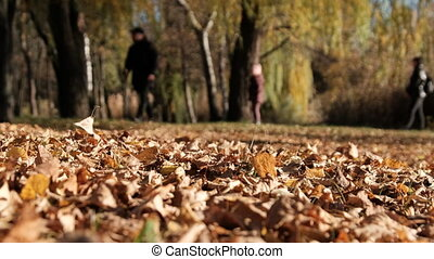 Happy Family in Blur Walks and Have Fun in the Autumn Park. ...