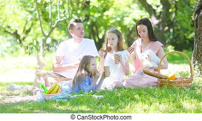 Happy family on a picnic in the park on a sunny day - Young...