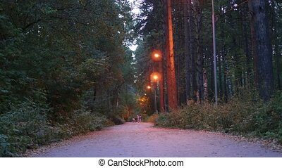 family walks in the evening with the Park lights