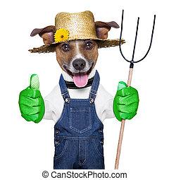 farmer dog - happy farmer dog with thumb up holding a ...