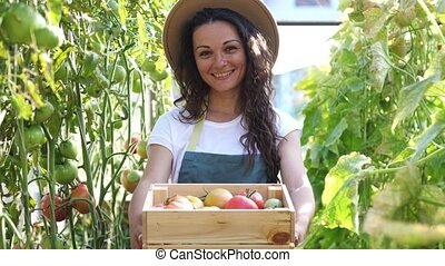 Happy farmer in hat with the produce from the tomato garden. Woman in hat holds wooden box with tomatoes ad showes them to camera