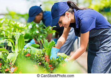 female nursery worker trimming plants